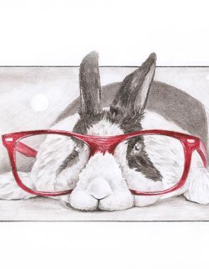 Rabbit-Mini
